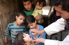 2012 - năm thành công của Tổ chức Y tế Thế giới