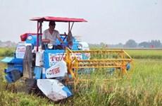 Khuyến nông cần kết nối tốt giữa sản xuất và tiêu thụ
