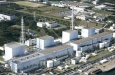 Điện hạt nhân Nhật Bản chưa thể hoạt động trở lại