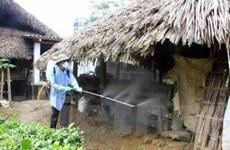 Gian nan cuộc chiến dịch bệnh ở vùng cao Lào Cai