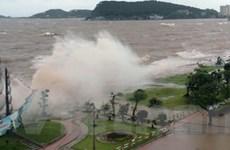 Lưới điện miền Bắc thiệt hại 47 tỷ đồng do bão số 6