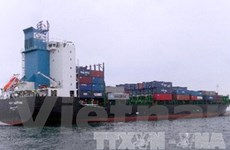 Thấy 2 thi thể tàu cá bị đâm chìm ở biển Vũng Tàu