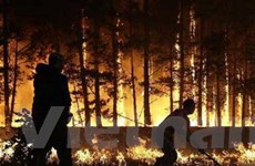 Hạn hán và cháy rừng ở Nga trong tầm kiểm soát