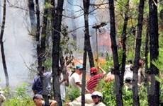 Thừa Thiên-Huế: Cháy rừng do đốt thực bì, vàng mã