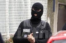 Pháp: Thành phố Marseille bắt giữ 12 cảnh sát bẩn