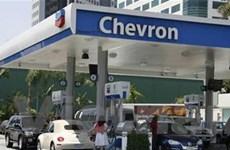 Chevron bị tòa án Argentina tịch biên 100% tài sản