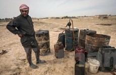 Syria: Khó nối lại sản xuất dầu mỏ dù EU bỏ cấm vận