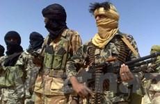 Chính phủ Mali và phiến quân thỏa thuận ngừng bắn