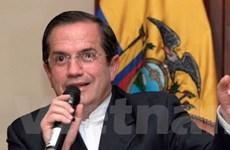 Ecuador xem xét đơn xin tị nạn của Edward Snowden