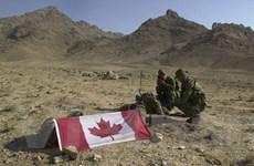 14% binh sỹ tới Afghanistan mắc rối loạn tâm thần