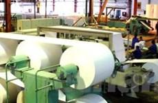 Sản phẩm giấy Bãi Bằng mới cho người dùng Việt