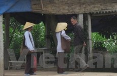 Bắc Ninh: Nạn giả sư, chính quyền bất lực hay thờ ơ?
