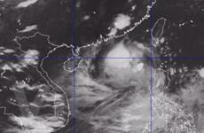 Cơn bão số 4 đang hình thành ở biển Đông