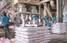 Sản xuất thức ăn chăn nuôi lệ thuộc nước ngoài