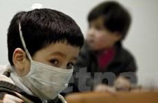 Tốc độ lây lan dịch cúm H1N1 đang giảm dần ở Chile