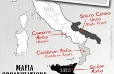 Italy tịch thu hơn 200 triệu euro tài sản của mafia