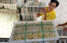 Hướng đi mới cho xuất khẩu vào Trung Quốc