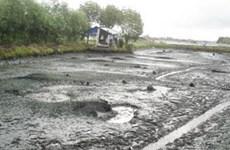 Điều tra thiệt hại kinh tế và môi trường với sông Thị Vải