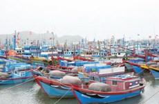 TP.HCM đảm bảo an toàn cho người và tàu thuyền