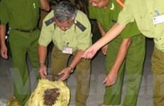 Thu giữ 3 tấn mỡ động vật đã bị phân hủy