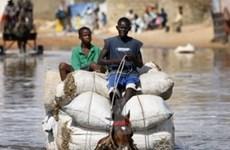 LHQ kêu gọi cứu trợ đối với các thảm họa nhân đạo