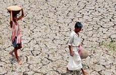 Ấn Độ: Hạn hán nghiêm trọng nhất kể từ năm 1972