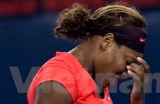 Giải Trung Quốc mở rộng - Nốt trầm cho Serena