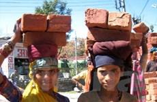 Ấn Độ ban hành chính sách về thị thực lao động