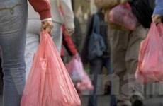 Mỹ áp thuế bán phá giá với túi nhựa PE Việt Nam