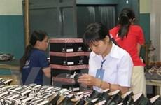 Bắc Âu phản đối thuế chống phá giá giày da VN
