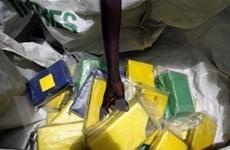 Cảnh báo hiểm họa buôn lậu ma túy tại châu Phi