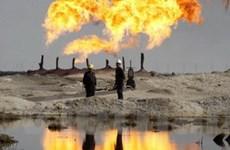 Thị trường dầu kỳ vọng vào Hội nghị Copenhagen