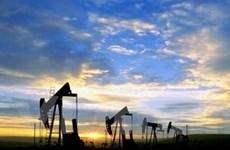 Giá dầu phục hồi từ ngưỡng thấp nhất 6 tuần