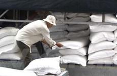 Mua 50.000 tấn gạo để bổ sung dự trữ quốc gia