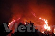 """Tập trung cứu rừng Tà Sùa bị """"bà hỏa"""" bủa vây"""