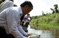 Cà Mau tổ chức thả động vật hoang dã về rừng