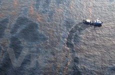 Mỹ bắt đầu thiêu hủy dầu rò rỉ ở vịnh Mexico