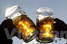 Lễ hội bia Carlsberg lần đầu diễn ra tại Festival Huế