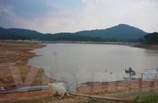 Ngoại ô Đà Lạt thiếu nước sinh hoạt trầm trọng