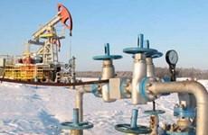 Tái áp dụng thuế xuất khẩu mỏ dầu ở Đông Siberia
