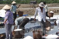 Bạc Liêu: Việc mua muối tạm trữ chưa được thực hiện