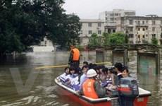 Mưa bão tại Trung Quốc, hơn 50 người thiệt mạng