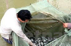 Lập Viện nghiên cứu thủy sản tư nhân đầu tiên