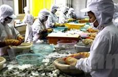 Việt Nam nộp bản đệ trình vụ kiện tôm cho WTO