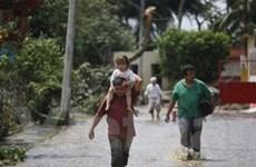 Mưa lũ lớn gây thiệt hại nặng ở Trung Mỹ, Nigeria