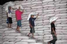 2011: Philippines giảm 2/3 lượng gạo nhập khẩu