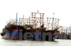 Gắn thiết bị vệ tinh miễn phí cho 3.000 tàu cá