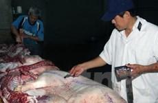 Giá lợn hơi tại Bạc Liêu đã đạt mức tăng kỷ lục