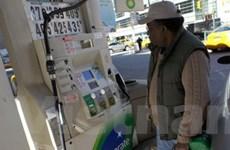 Giá dầu trong năm 2011 có thể tăng quá dự báo