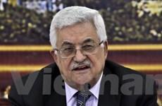Tổng thống Abbas hoãn cuộc bầu cử địa phương